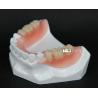 Buy cheap esthetic valplast denture/flexible denture/dental lab from wholesalers