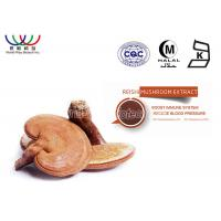 Quality Anti Tumor Reishi Spore Powder , Ganoderma Lucidum Extract Polysaccharieses for sale