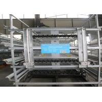 Quality Galvanized A Type Baby Chick Cage Advanced Automatic Operation System for sale