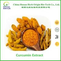 Quality factory supply natural turmeric 95% curcumin extract powder for sale