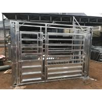 Quality Galvanized steel Sheep Panel for sale