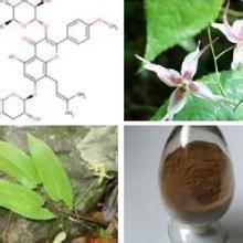 Quality Horny goat weed extact / Epimedium PE Icariin 10%-98% for sale