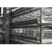 Quality Professional Automatic Poultry Feeder System Chicken Feeder Equipment for sale