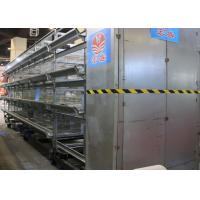 Quality High Efficiency Automatic Chicken Cage H Type  Free Layout Design for sale