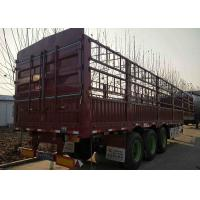 China Customized Tractor Trailer Truck 3 Axle 40 Ton Fence Cargo Trailer For Transport Cargo on sale