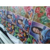 Quality 100% Polyester Windows Curtain / Flag Fabric 110-250 G / GSM for sale