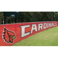 Quality Advertising Pvc Flex Banner Printing , Coated Custom Mesh Banners for sale