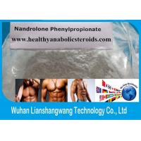 China CAS 62-90-8 Deca Durabolin Steroid Npp , Nandrolone Phenylpropionate Powder for Weight Loss on sale