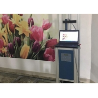 Quality 1920X1080 CMYK Automatic Wall Painting Machine for sale