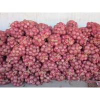 Buy cheap Fresh red onion, organic rose onion peeled spicy vegetable, medium size,Chinese from wholesalers