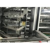 Quality Automatic 96 Birds 4 Tiers H Type Poultry Layer Cage for sale