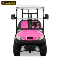 Quality Battery Powered Custom Electric Golf Carts Vehicle Four Wheeler ADC Motor for sale