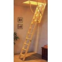 Quality Telescopic ladder for sale