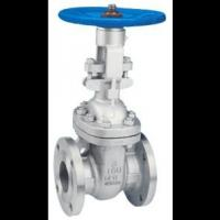 Quality Manual Resilient Seated Gate Valve For Chemical , Shipping , Energy Sources for sale