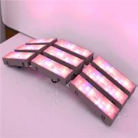 Best WH led grow light led plant grow lights led plant grow lgihts,LED horticulture lighting big power laser light, wholesale