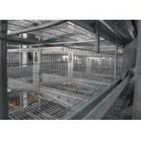 Quality A Frame Commercial Poultry Equipment Poultry Shed Customized Size for sale