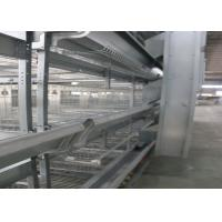 Quality Healthy Automated Poultry Equipment Good Daylight And Ventilation for sale