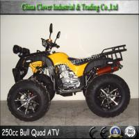 cool sports 250 atv images, cool sports 250 atv