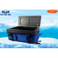 China Portable Vaccine EPP Cooler Box Capacity 8L For Transport Rotational Moulding Cooler Box on sale