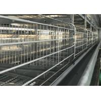 Buy cheap High Efficiency Automatic Chicken Waterer System / Broiler Automatic Drinker from wholesalers