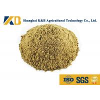 Buy Full Fat Organic Fish Meal Fertilizer / Food Grade Fish Meal Enhance Poultry Nutrition at wholesale prices