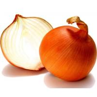 Quality Fresh yellow onion, frozen onion, organic onion all size, 5.0CM, new crop gloden onion for sale