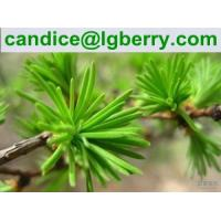 Buy cheap Water Soluble Pine needle protein 80% from wholesalers