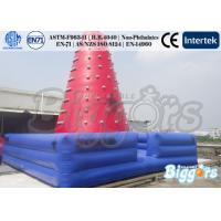 China Durable PVC Inflatable Climbing Tower Inflatable Sport Games Climber for Adults on sale
