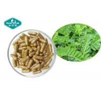 China Astragalus Root Herbal Supplements Hard Capsule For Support Immune System on sale