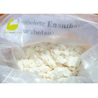 Quality White Crystalline Powder Muscle Building Steroid Hormone Powder Testosterone Enanthate for sale