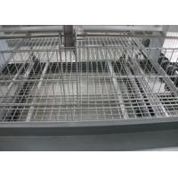 Quality Automatic Baby Chick Cage System 180 Birds Capacity 15-20 Years Lifespan for sale