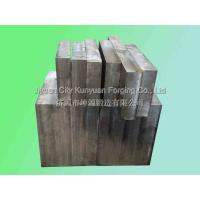 China S45SU Forged Block Module Heavy Steel Forgings 550 x 550x500mm for sale