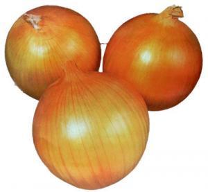 Quality Fresh Onion Red Onion Yellow White Onion China Onion Peeled Onion for sale