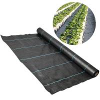 Weed Control Polypropylene Ground Cover UV Anti Recyclable Easy Install