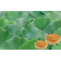 Quality Pharmaceutical Ginkgo Biloba Leaf Extract For Helping Improve Memory CHP for sale