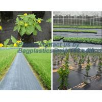 Quality Water management weeb control pavement preservation courtyard beautify anti insect anti mold seedbed protection vegetati for sale