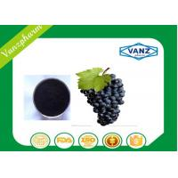 China Pure Herbal Extracts HPLC  95% OPC grape seed extract for Antioxidant on sale