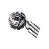 Quality Wire Collated Galvanised Coil Nails For Construction Screw Shank Available 2'' x .120'' for sale