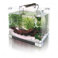 China New home ,office acrylic aquarium fish tank led lighting with air pump on sale
