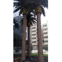 China hight quality fiber glass Artificial palm tree special large outdoor artificial trees decorative chian factory on sale