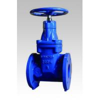 Quality Non Rising Stem 250PSI Resilient Seated Gate Valve for sale