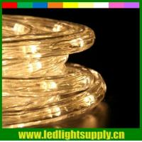 Best 2 wire warm white christmas waterproof led rope light outdoor wholesale