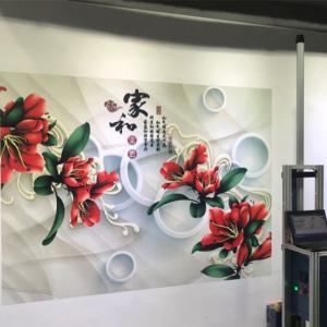 Quality 720X1440DPI CMYK 120w 9㎡/h Automatic Wall Inkjet Printer for sale