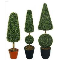 Artificial Plants And Trees Boxwood