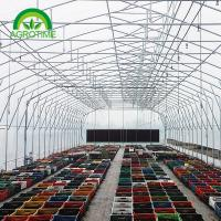 China 2019 poly film thickness butterfly greenhouse grow tent for vegetables on sale