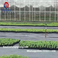 Quality Black pp woven fabric ground cover weedmat Agricultural Plastic Woven Mulch Weedmat for sale