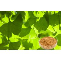Quality USP40 Ginkgo Leaf Extract , Ginkgo Biloba Powder For Food Supplement for sale