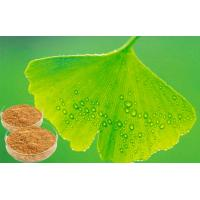 Quality EP 9.0 Natural Botanical Ginkgo Extracts For Help improve memory for sale