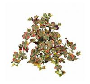 Artificial Grape-Leaves