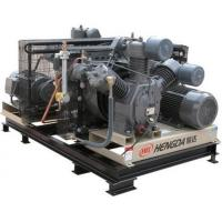 Quality Energy Saving 22KW Oil - Free Gas Powered Air CompressorWith Solenoid Valve for sale